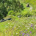 Carpathians Landscape by Alain De Maximy