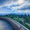 Clingmans Dome - Great Smoky Mountains National Park by Alex Grichenko