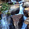 Finlay Park Waterfall 3 by Lisa Wooten