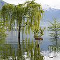 Flooding Alpine Lake by Mats Silvan