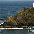 Heceta Head Lighthouse by John Shaw
