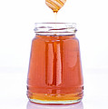 Honey by Paulo Goncalves