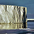 Iceberg In The Ross Sea Antarctica by Carole-Anne Fooks