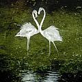 Love Is by Werner Lehmann