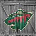 Minnesota Wild by Joe Hamilton