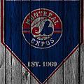 Montreal Expos by Joe Hamilton