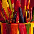 Multi Colored Paint Brushes by Jim Corwin
