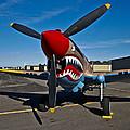 Nose Art On A Curtiss P-40e Warhawk by Scott Germain