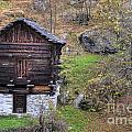 Old Rustic House by Mats Silvan