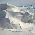 Pack Ice, Antarctica by John Shaw