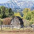 Palisades Barn by Image Takers Photography LLC - Laura Morgan