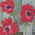 Red Poppies by Vicki Baun Barry