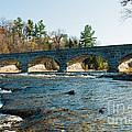 5-span Bridge by Cheryl Baxter