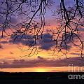 Spectacular Sunset Epsom Downs Surrey Uk by Julia Gavin