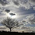 Dramatic Sky by Julia Gavin