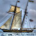 Tall Ships by Dale Powell