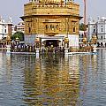The Golden Temple At Amritsar India by Robert Preston