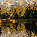 The Grand Tetons Schwabacher Landing Grand Teton National Park by Fred Stearns