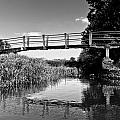 The River by David Pyatt