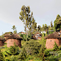 The Rock-hewn Churches Of Lalibela by Martin Zwick
