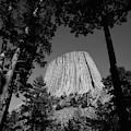 Usa, Wyoming, Hulett, Devil's Tower by Walter Bibikow