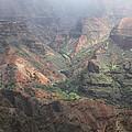 Waimea Canyon by Dick Willis