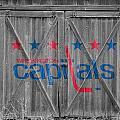 Washington Capitals by Joe Hamilton