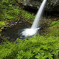 Waterfall by John Shaw