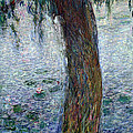 Waterlilies Morning with Weeping Willows by Claude Monet