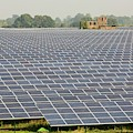 Wymeswold Solar Farm by Ashley Cooper