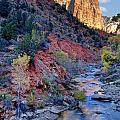 Zion National Park by Utah Images
