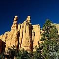 Bryce Canyon by Marc Bittan