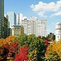 Atlanta Ga. by Clayton Odom
