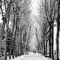 Pere-lachais Cemetery In Paris France by Richard Rosenshein