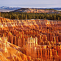 Bryce Canyon by Brian Jannsen