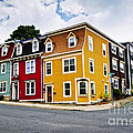 Colorful Houses In St. John's Newfoundland by Elena Elisseeva