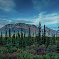 Denali Highway, Route 8, Offers Views by Panoramic Images