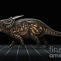 Dinosaur Einiosaurus by Science Picture Co