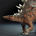 Dinosaur Kentrosaurus by Science Picture Co