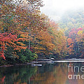 Fall Color Williams River by Thomas R Fletcher