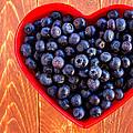 Fresh Picked Organic Blueberries by Teri Virbickis