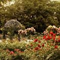 Garden Gazebo by Jessica Jenney