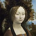 Ginevra De Benci by Leonardo da Vinci