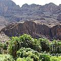 Landscape-canarian Volcanic Mountains by Bozena Simeth