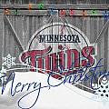 MINNESOTA TWINS by Joe Hamilton