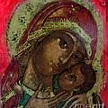 Mystical Rose by Patricia Januszkiewicz
