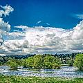 Nisqually Wildlife Refuge by Mike Penney
