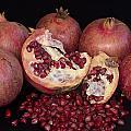 Pomegranates by Manolis Tsantakis