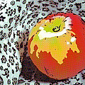 Red And Yellow Apple by Alain De Maximy