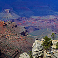 South Rim Of The Grand Canyon by Jeffrey Hamilton